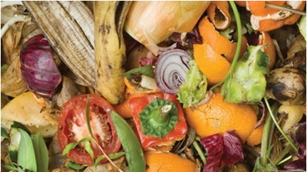 Food Waste Recycling
